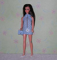 Blue Daisy Mini with purse