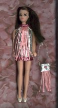 Silver with hot pink trim & pink fringe + purse