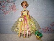 Yellow Tulle Dress with purse & basket (Jessica)