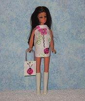 Ladybug mini with ladybug purse