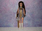 SILVER & GOLD fringe mini with purse