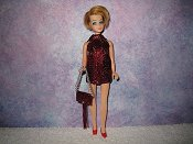 WINE & MAROON fringe mini with purse