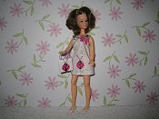 Lady Bug Mini with purse (Penny)