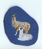 Paired Llama Example magnet