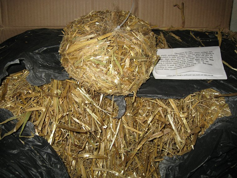 BARLEY STRAW for String Algae